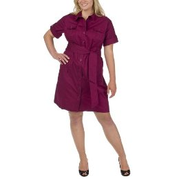 Merona Plus Berry Shirtdress